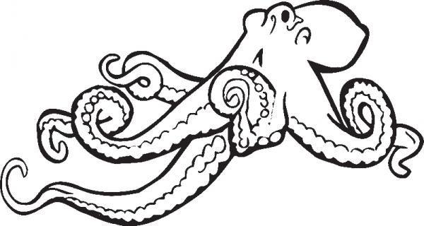 Раскраска осьминог ползет