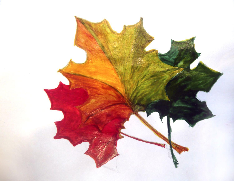 Рисунок красками